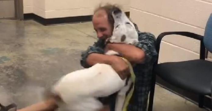 senzatetto abbraccia cane