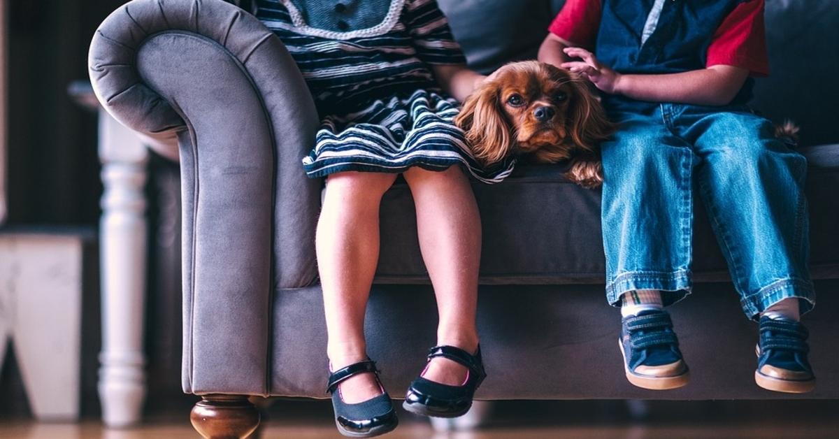 Attenzione a questi segnali se hai un cane e un bambino piccolo in casa insieme