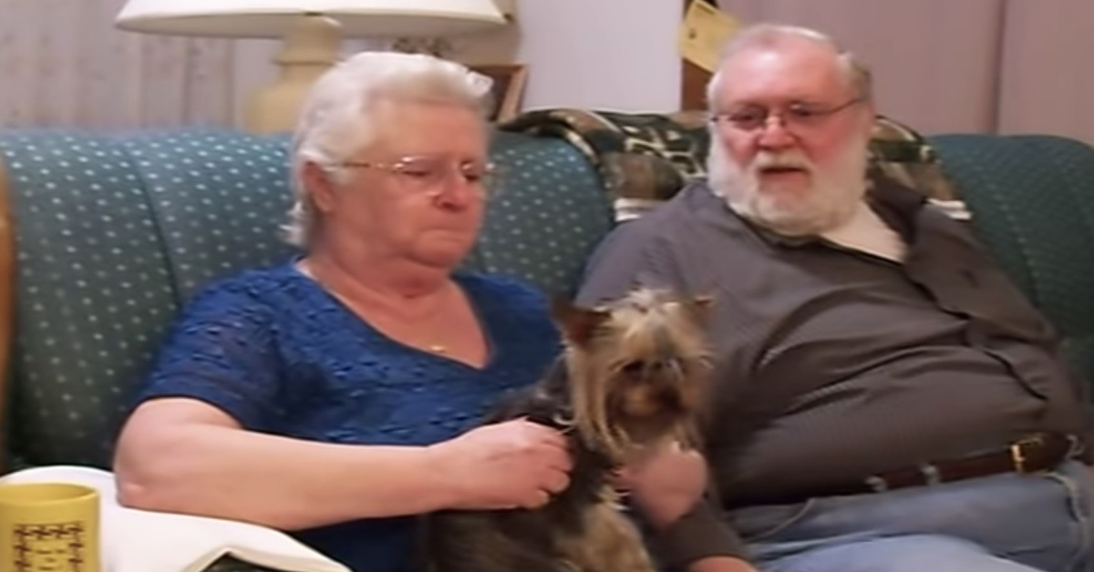 La signora anziana riceve una meravigliosa sorpresa: un cucciolo di Yorkshire Terrier (VIDEO)