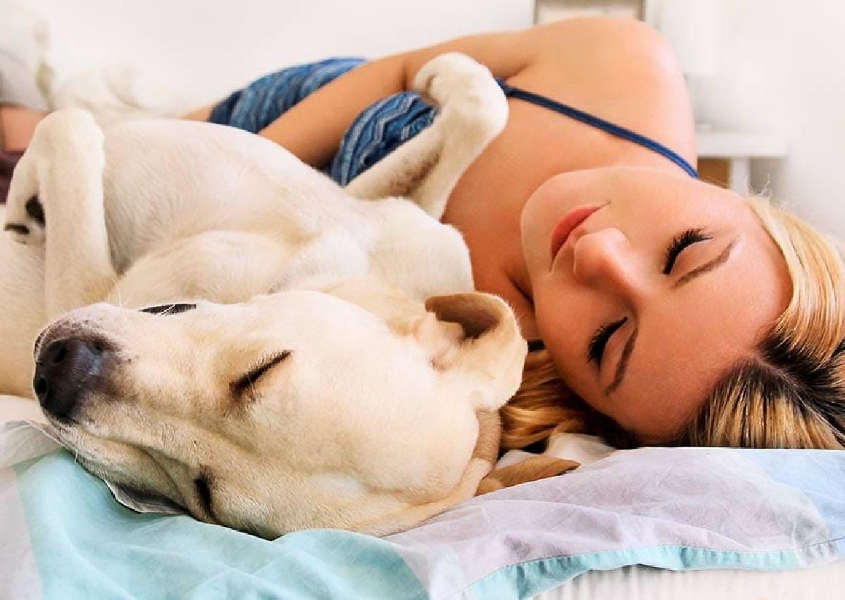 Attenzione, se dormi con il cane in una di queste posizioni sveli tutto del vostro rapporto