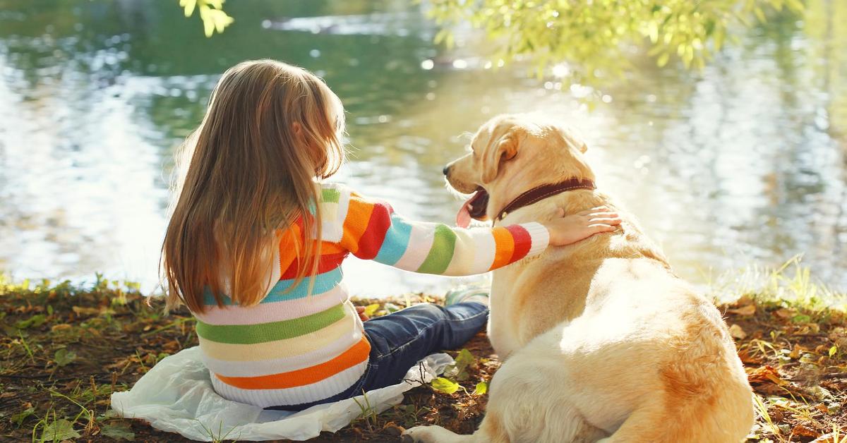 Attenzione, se il cane attacca i bambini a volte la colpa non é sua: ecco cosa succede