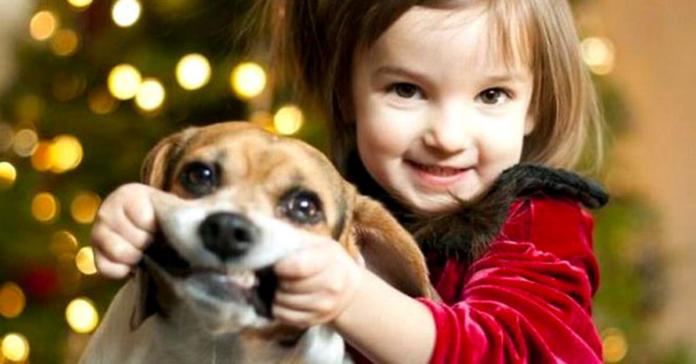 bambina dispettosa con cane