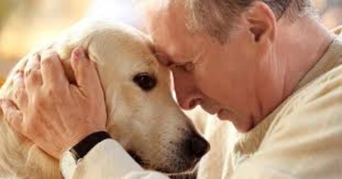 cane e padrone uomo mezza età
