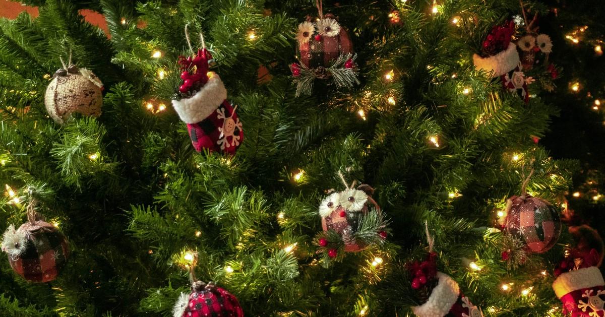 Cuccioli di cane e albero di Natale: come fare per non farglielo distruggere?