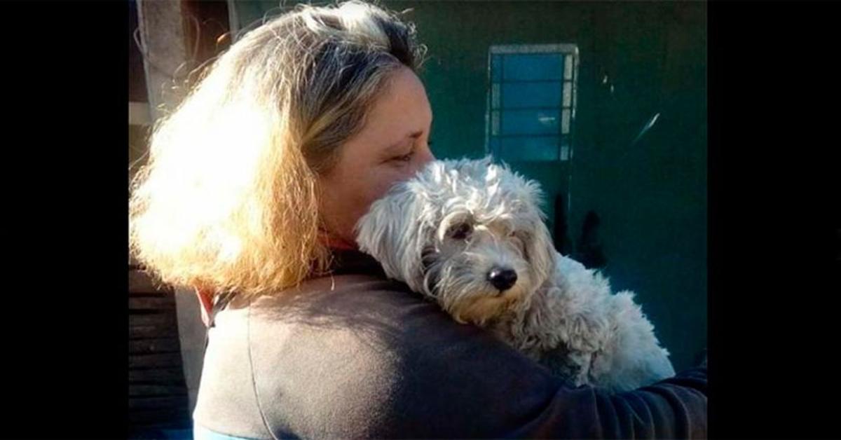 Tina, la cucciola di cane che ha avvisato la sua famiglia che era scoppiato un incendio in casa (VIDEO)