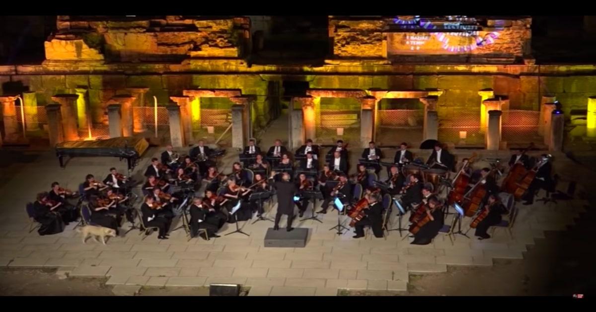 Labrador interrompe il concerto di un'orchestra in Turchia