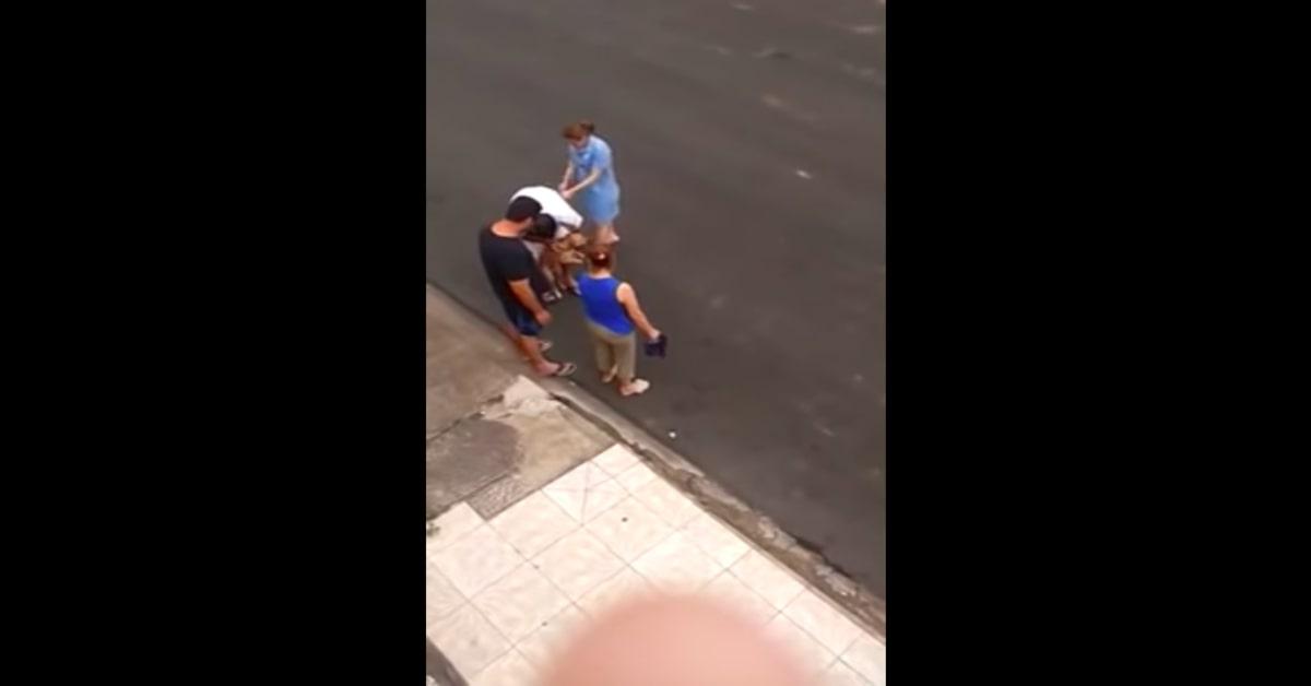 Il pianto di un cucciolo di cane che vede il suo papà umano ferito intenerisce la rete (VIDEO)
