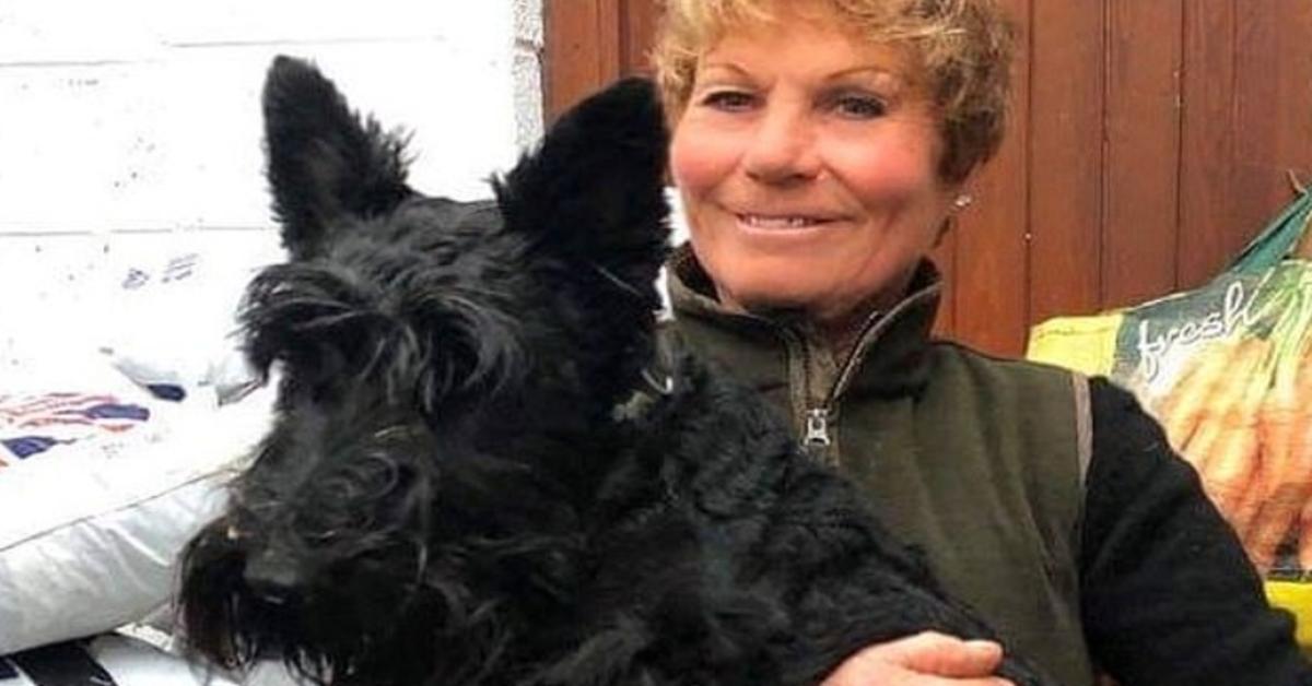 Squeak, lo Scottish Terrier che ha trasformato un carrello in una giostra (VIDEO)