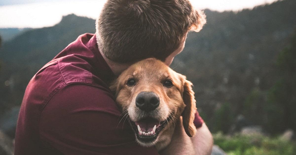 legame cane ragazzo