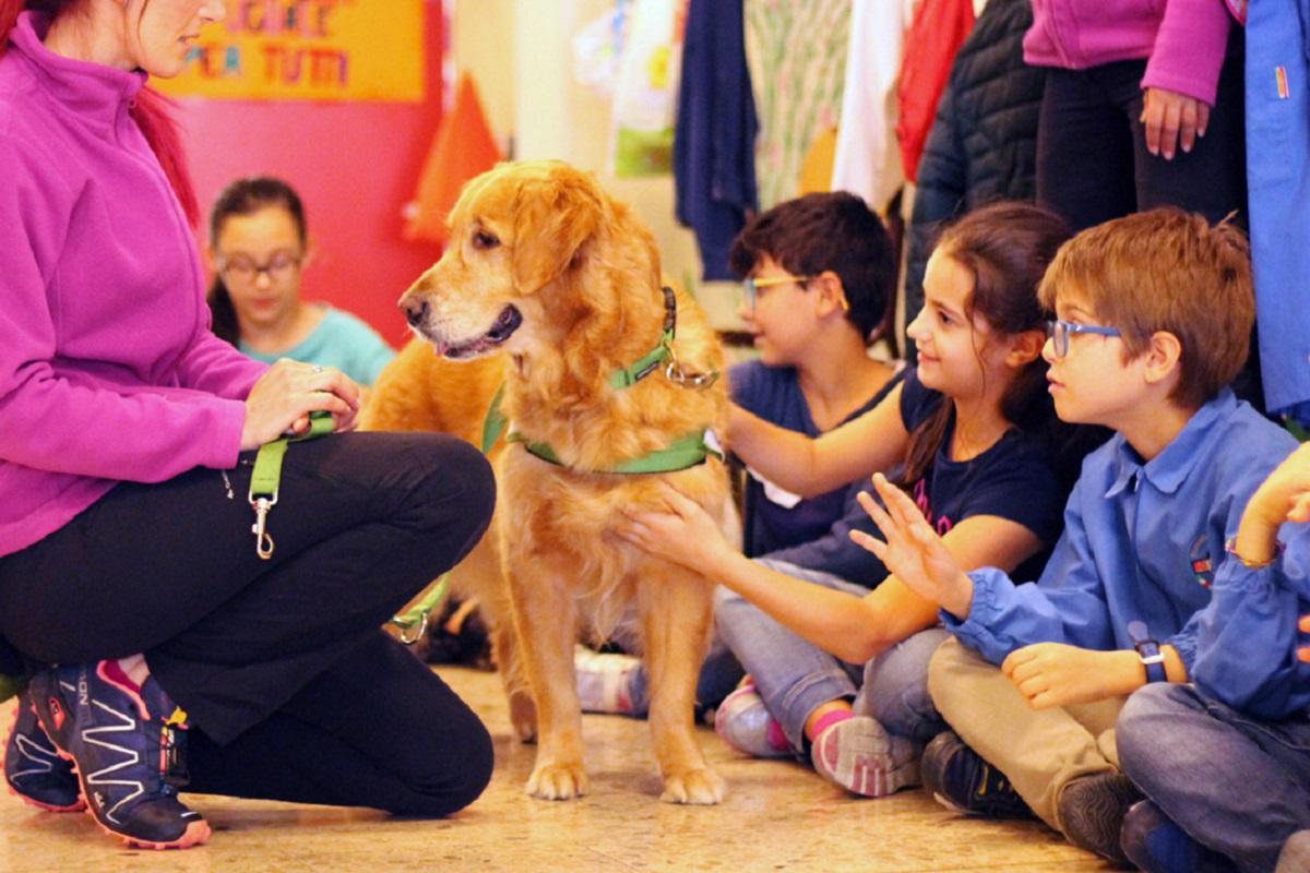 Come viene addestrato un cane da pet therapy, tutto quello che c'è da sapere