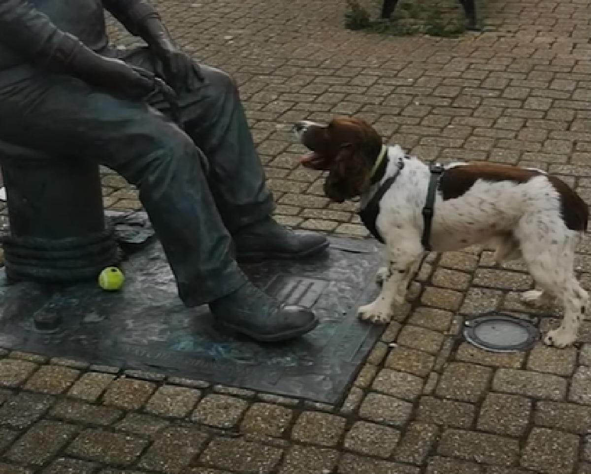 chester cucciolo gioca 10 anni statua