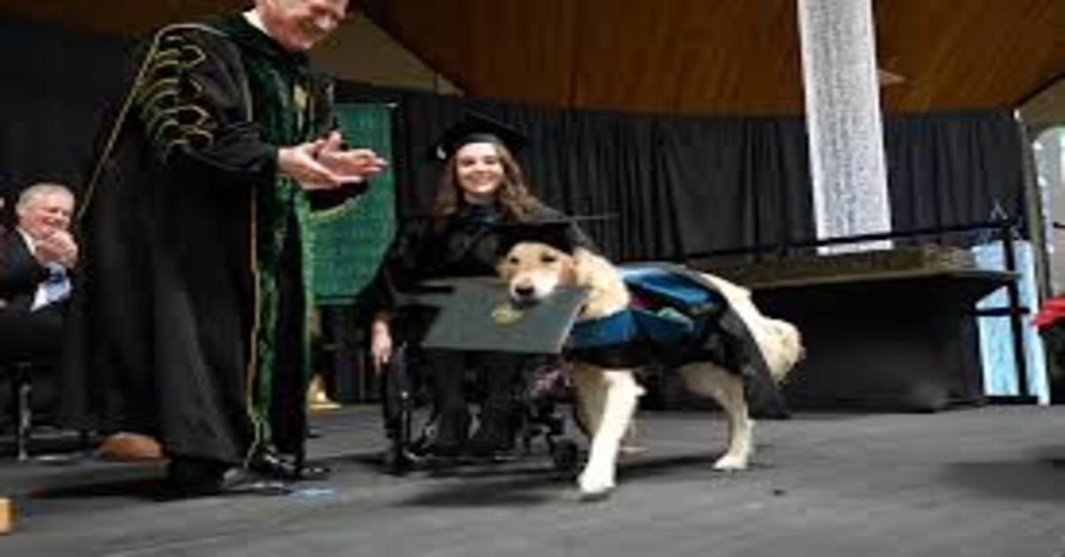 Griffin riceve il diploma