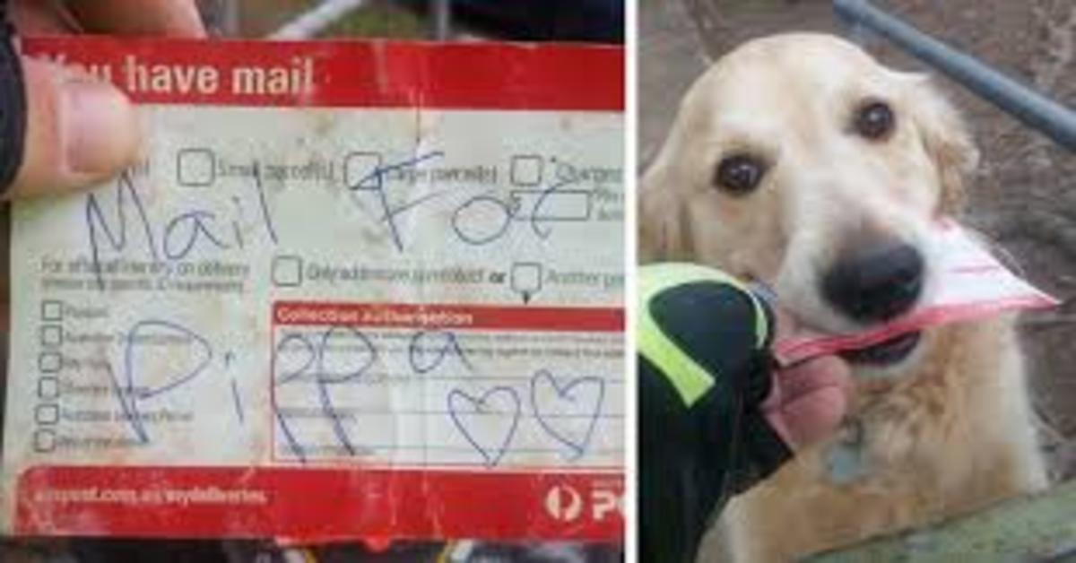 Pippa riceve lettere destinate a lei