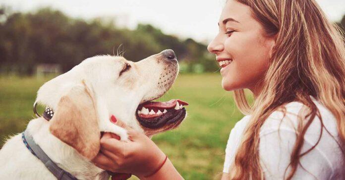 ecco svelato cosa provano cani per loro smili