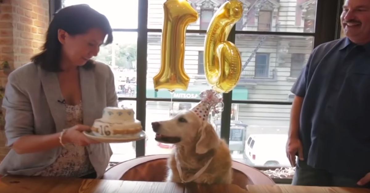 Bretagne festeggia il 16 compleanno