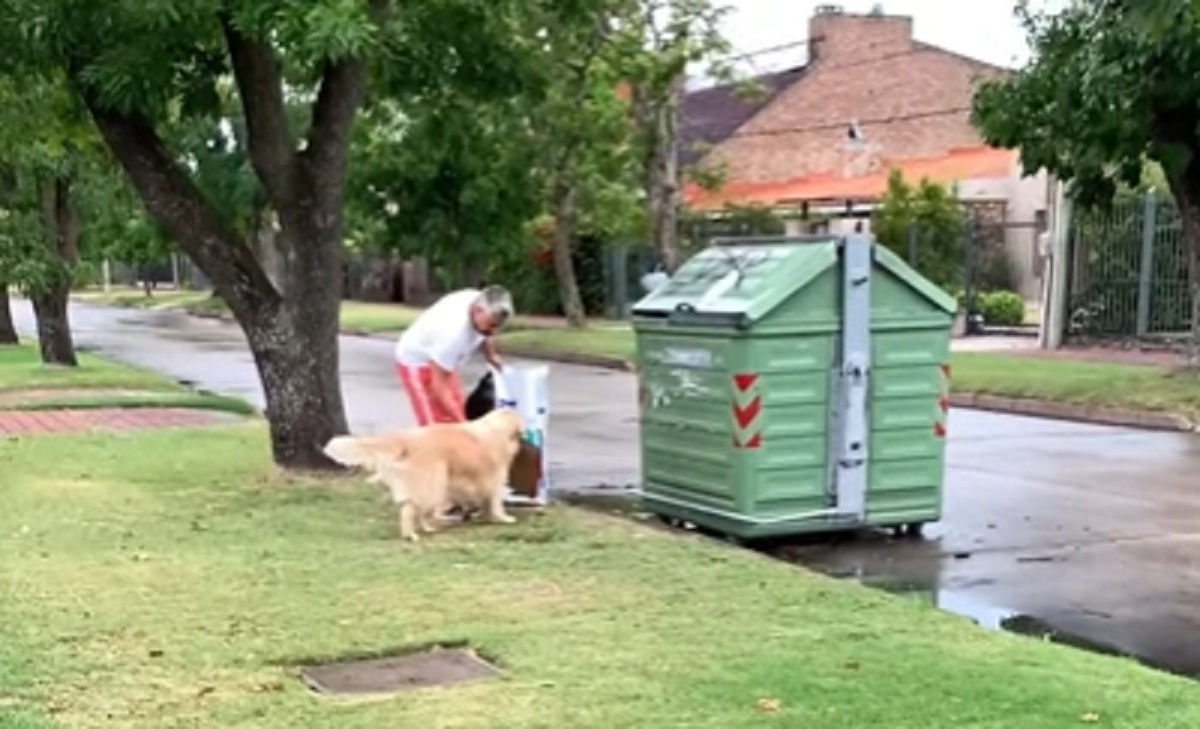 cane aiuta immondizia
