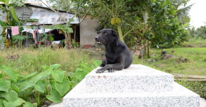 Mino sulla tomba di Khet