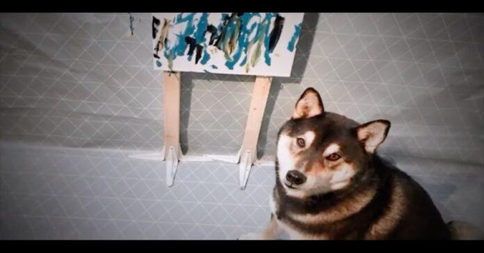 Hunter shiba Inu che dipinge