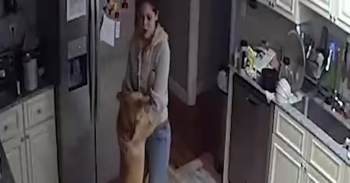 Nina cagnolina balla video