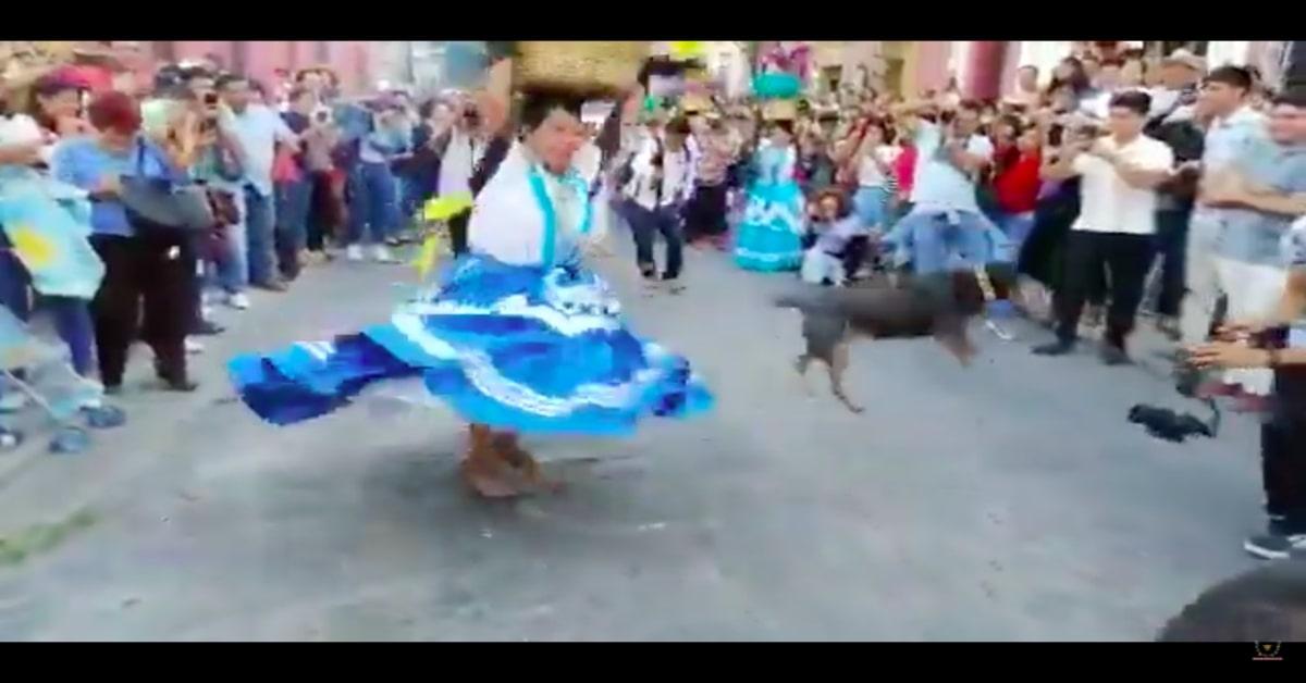 Mazapán, il cucciolo di cane ballerino invitato a tutte le feste tradizionali di Oaxaca in Messico (VIDEO)