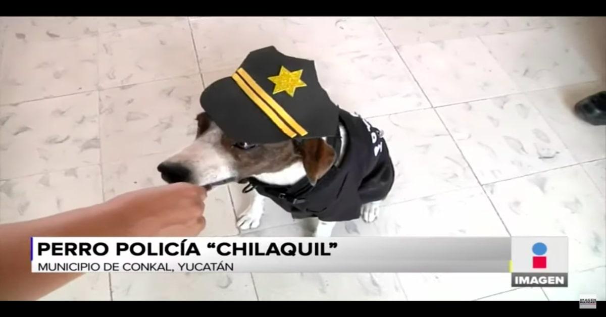 Chalaquil con uniforme di polizia