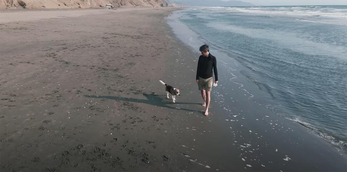 Il Beagle vede l'oceano per la prima volta: l'emozione è fortissima (VIDEO)