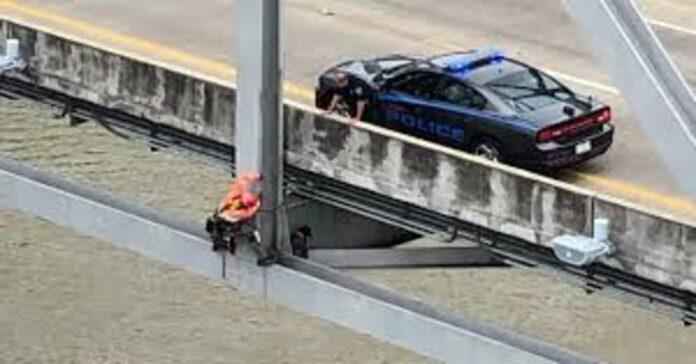 salvataggio cane su ponte del Missisippi