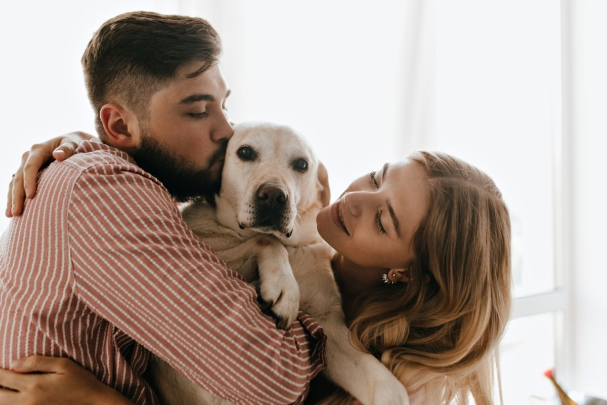 I cani possono fare i dispetti o non è possibile?