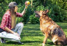 ragazza gioca con il suo cane
