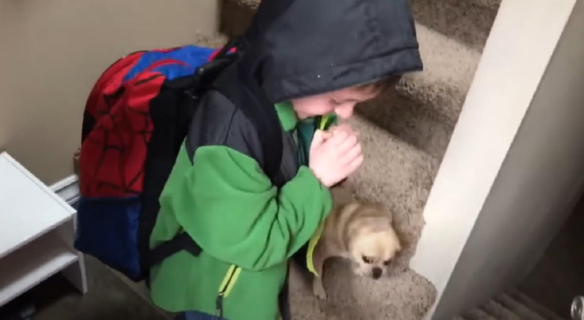 arrivato bimbo cucciolo