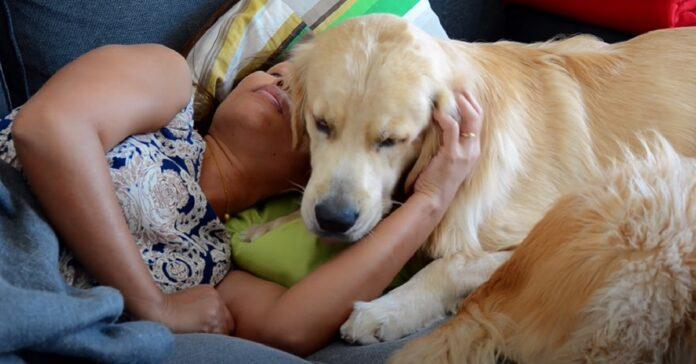 cane aiuta la mamma