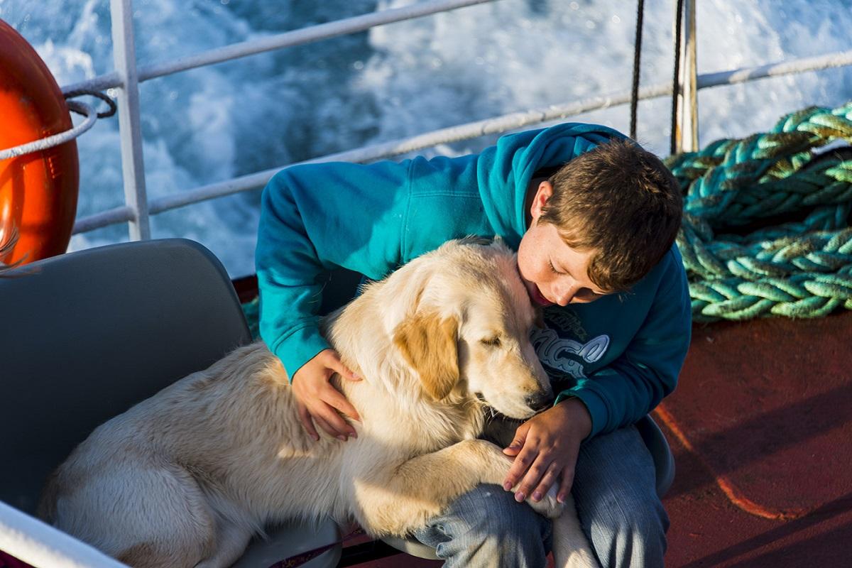 cane e bimbo molto uniti