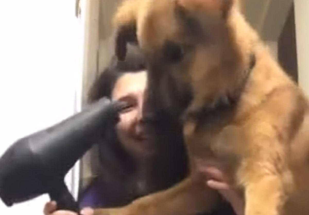 cane fono protegge