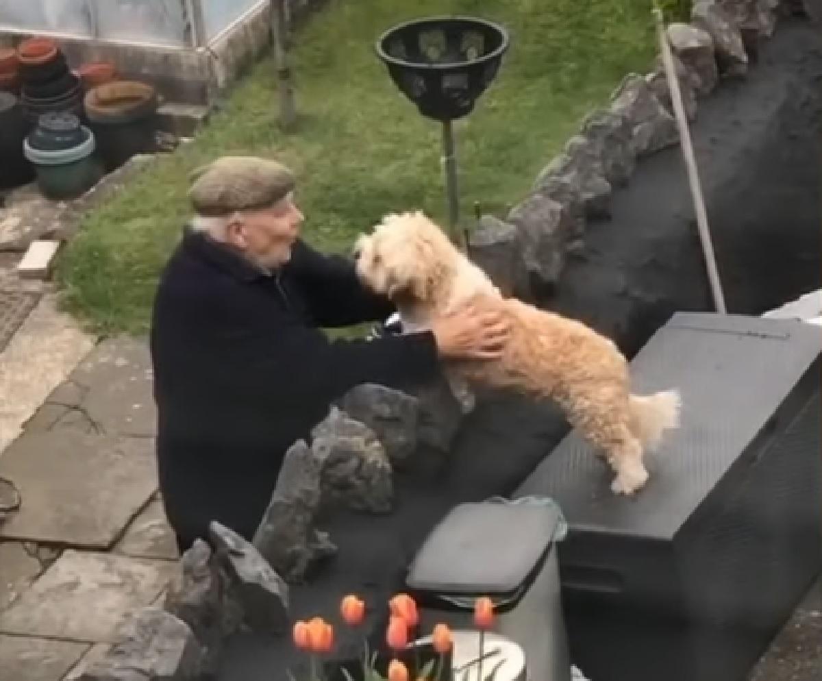 tilly cucciola vuole uscire casa saluto anziano