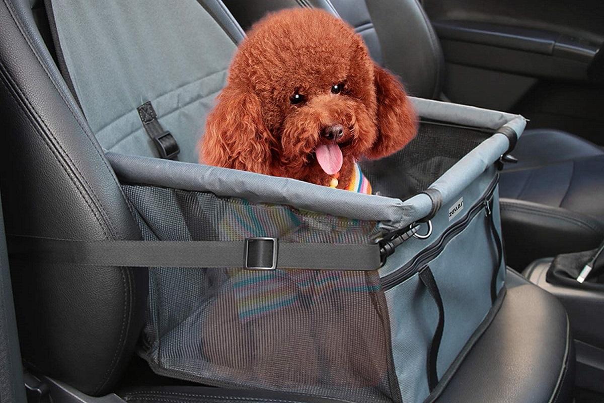 Borsa auto per cani