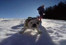 Camilla felice nella neve