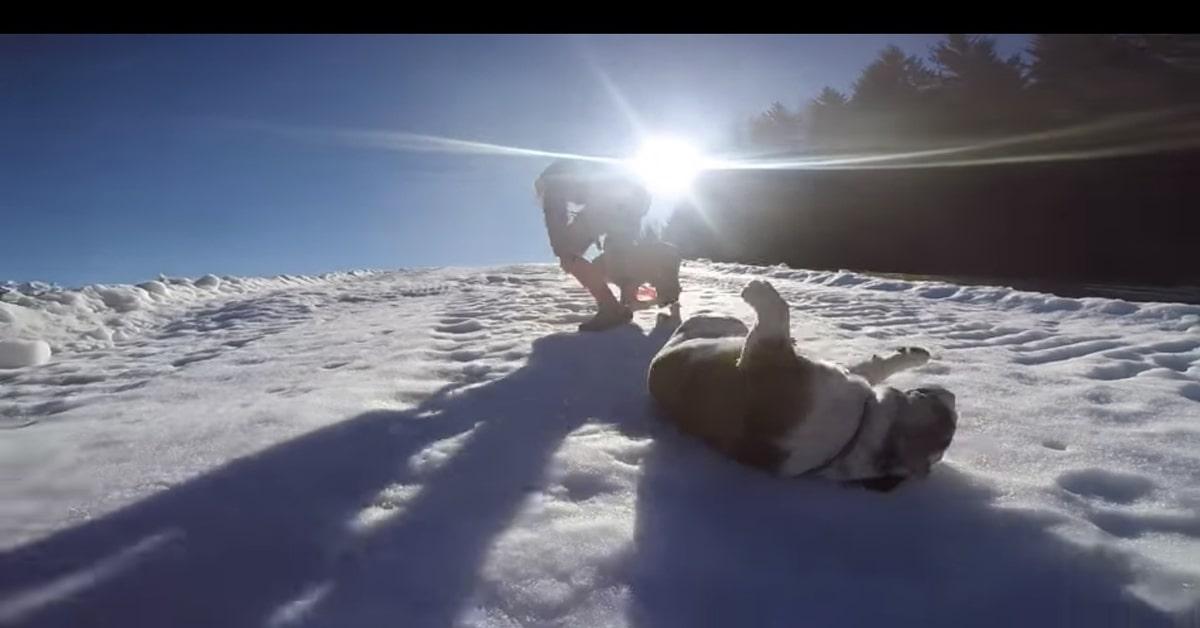 Camilla si rotola nella neve