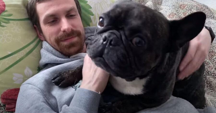 Bulldog Francese con il proprietario