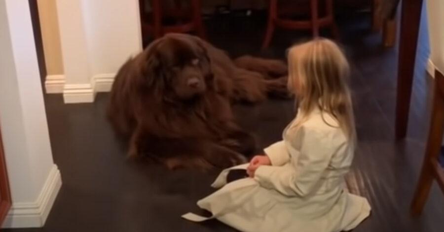 Terranova con una bambina