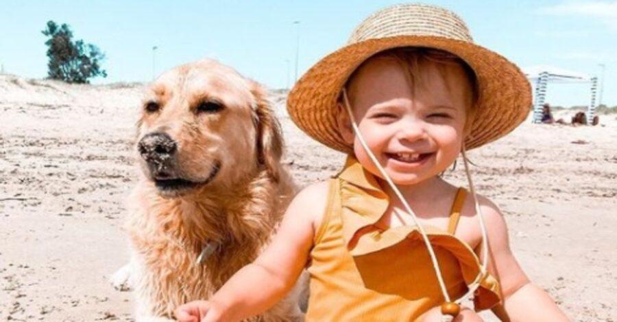 Marshall Golden Retriever amicizia bambina video
