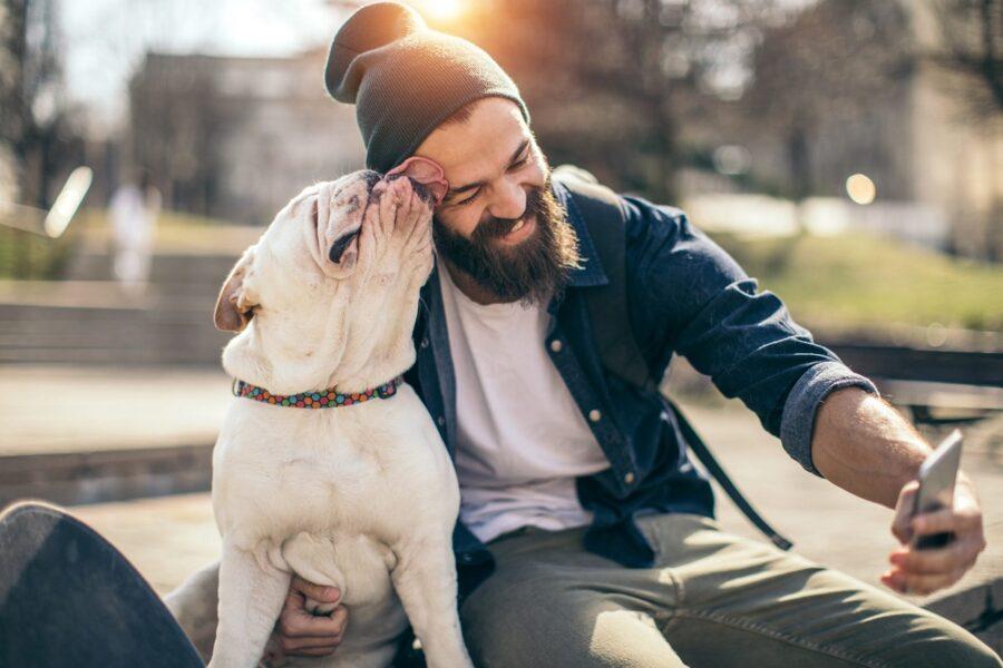 cane lecca padrone
