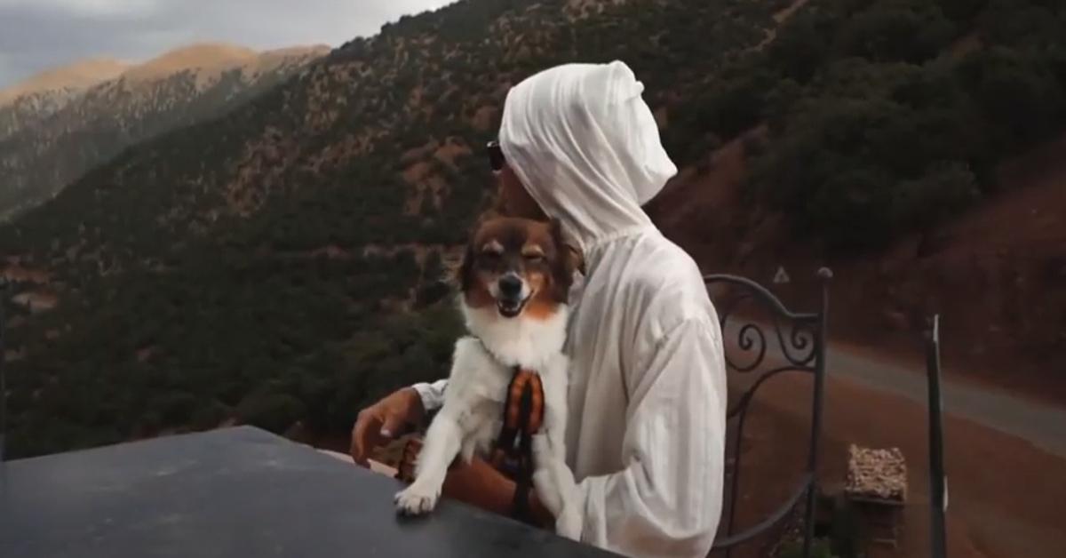 Snupi cagnolino video