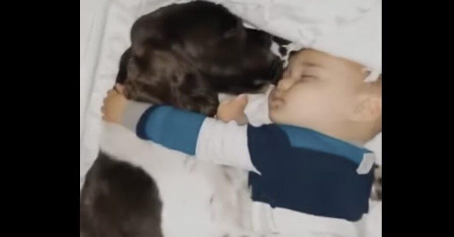 cane e bambino dormono abbracciandosi