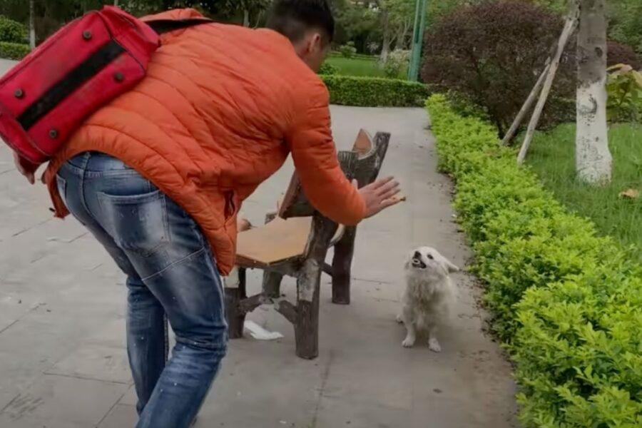 cane che ringhia al volontario