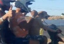 cane labrador conduce motocicletta