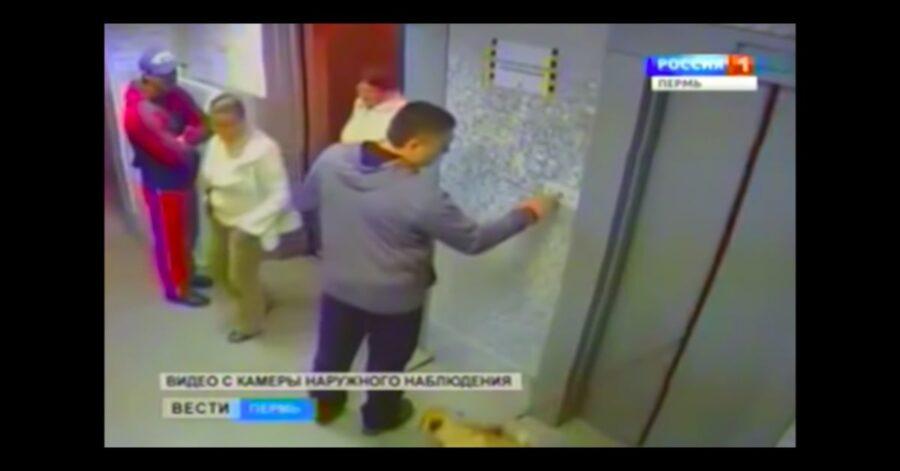 cane rimane fuori da ascensore