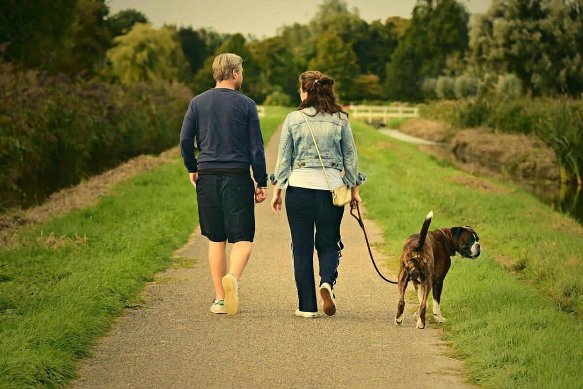 padroni con il cane a passeggio