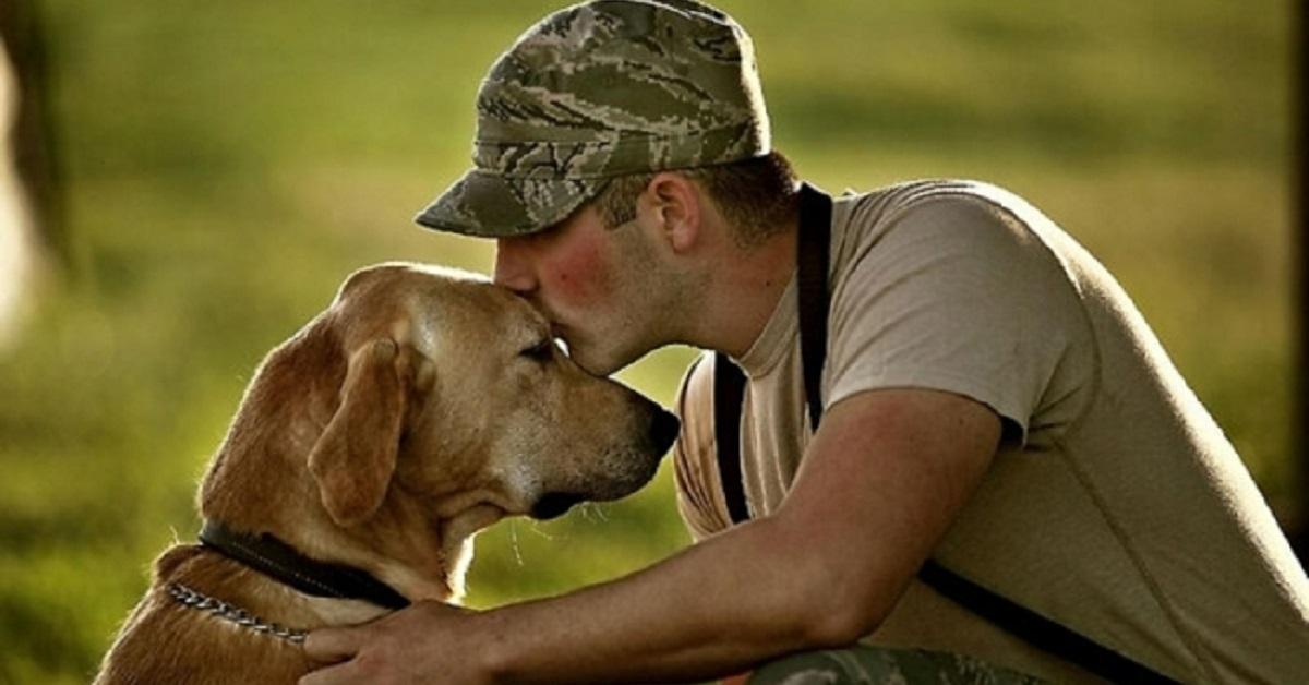 cani militari-ricordi