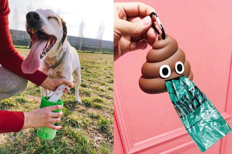 accessori originali per cani