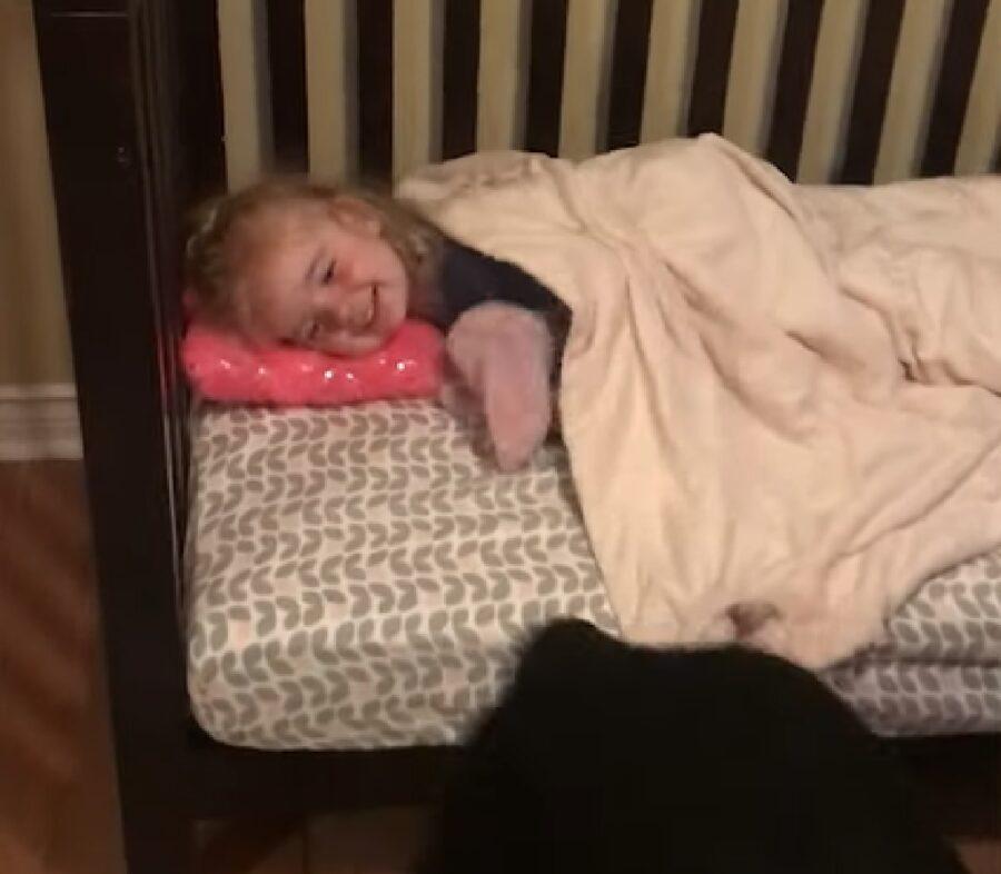 Cucciolo Rottweiler da il bacio della buonanotte alla sorellina, il video è fantastico